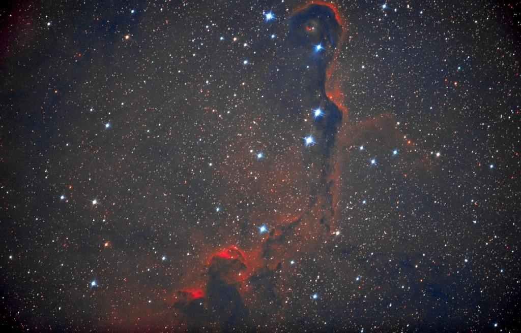 IC1396 Nébuleuse de la trompe d'éléphant dans Céphée