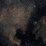 NGC7000 et nébuleuse North America dans le Cygne